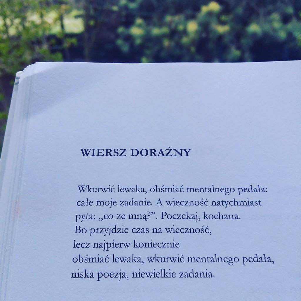 Choć wykonałem kopię wiersza, jego autor nie utracił pełnej kontroli nad swoją własnością. Rękopis wiersza i egzemplarz autorski tomiku nie zniknęły z jego mieszkania.